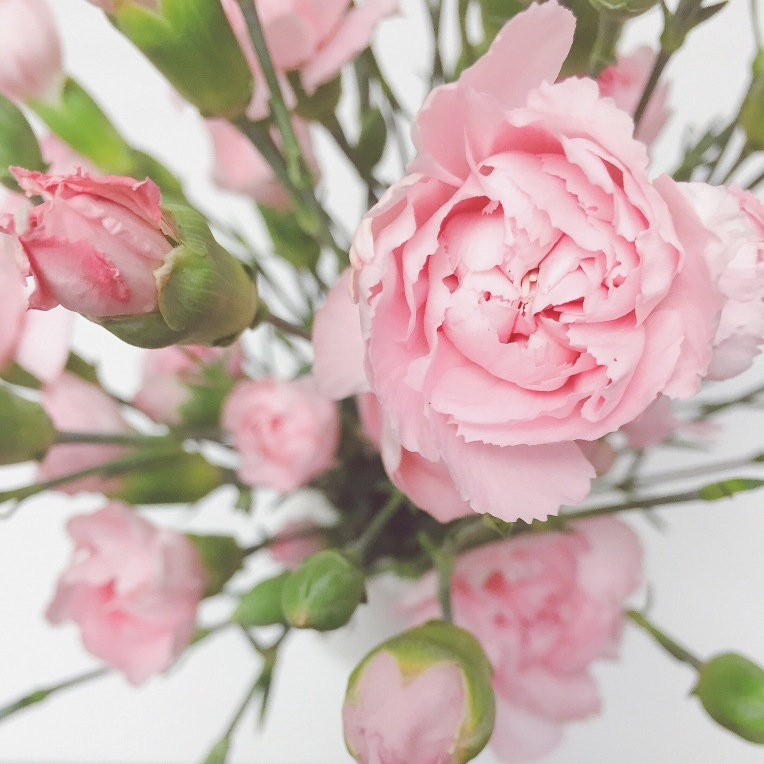 Inspired by this flowers with their delicate pink color.